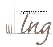 Laboratoire Nicolas Garnier : analyse des matériaux du Patrimoine culturel (LNG)